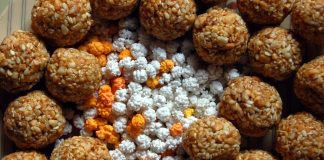 Importance and Significance of Makar Sankranti in Hindi