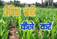 Organic Farming in Hindi