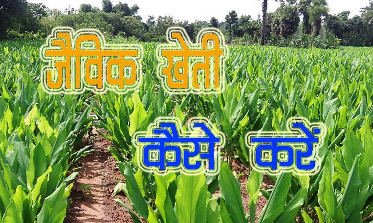 Organic Farming in Hindi