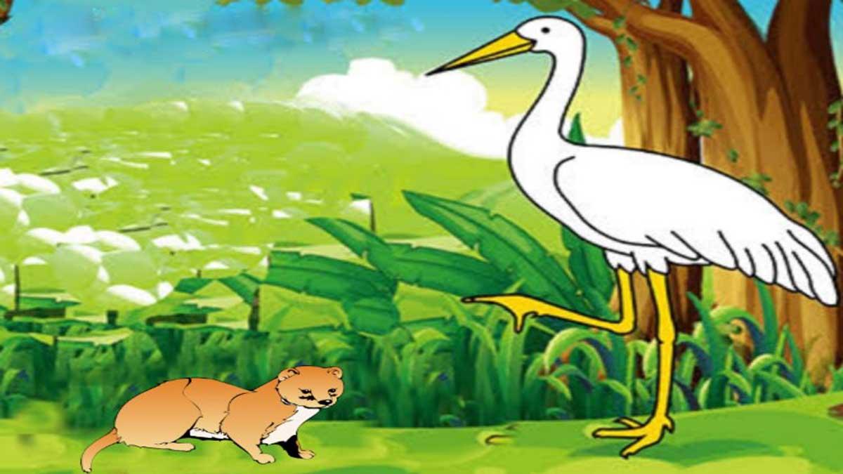 Foolish Crane And The Mongoose Story In Hindi