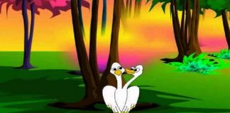 The Bird with Two Heads Story In Hindi