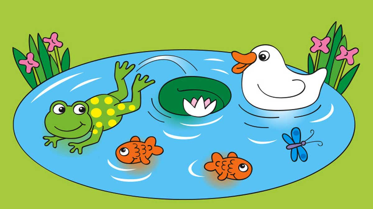 The Tale of Two Fishes and A Frog Story In Hindi