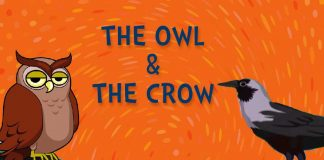 The War of Crows and Owls Story In Hindi