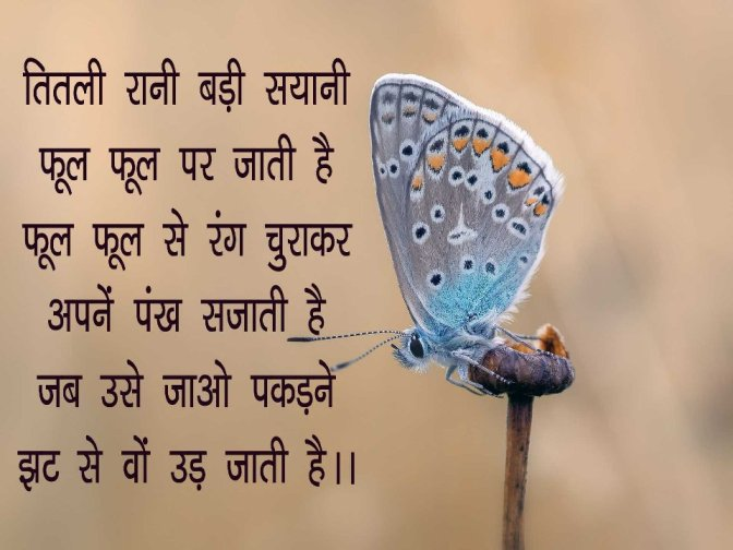 Hindi Poem on Butterfly for Class 3