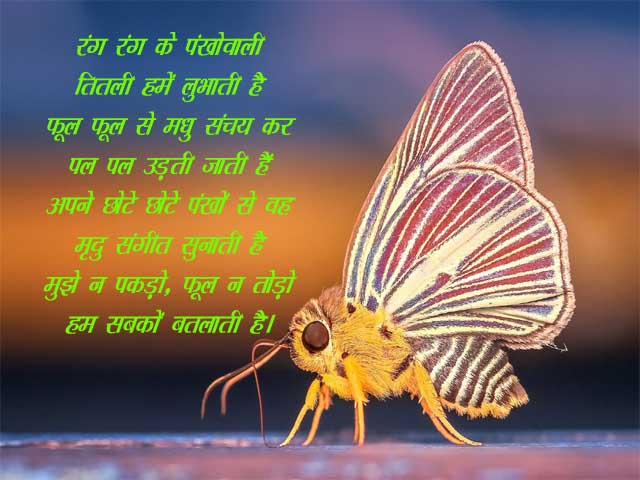 Poem of Butterfly in Hindi