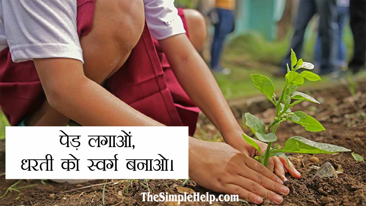 Save Trees Posters with Slogans in Hindi