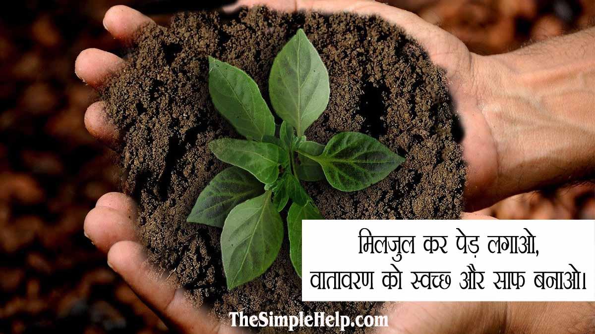 Slogan on Importance of Trees in Hindi
