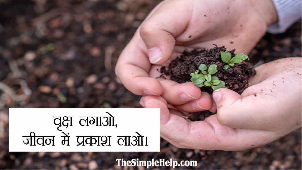 Slogans on Save Trees in Hindi with Pictures