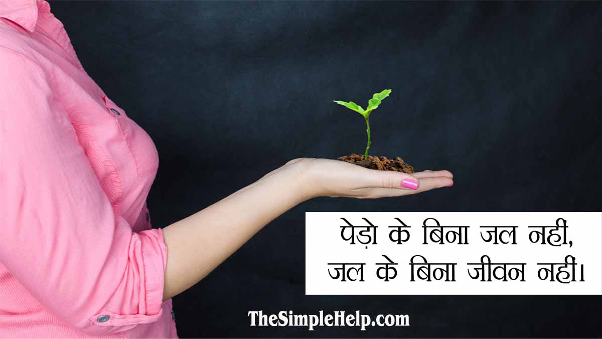 Unique Slogans on Save Trees in Hindi