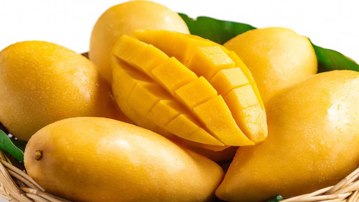 10 Lines on Mango in Hindi