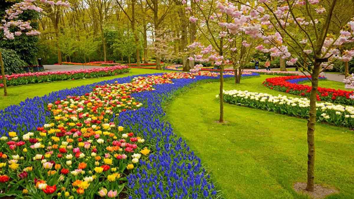 Garden Essay In Hindi