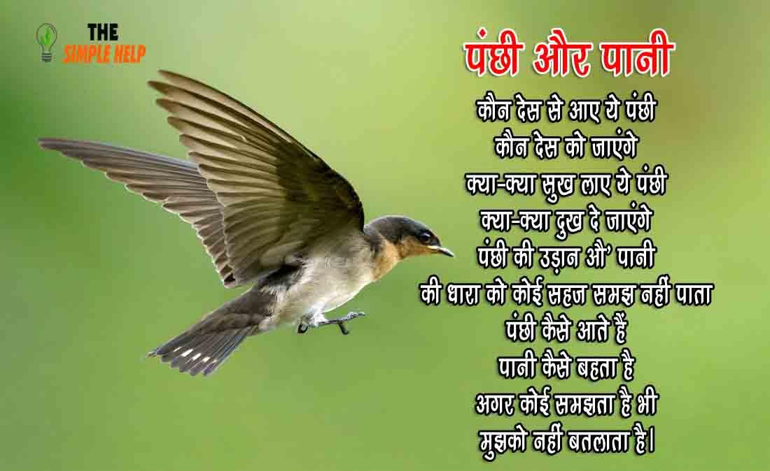 Hindi Poems on Birds Freedom