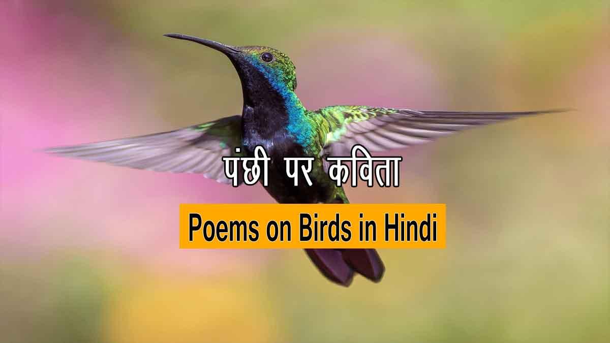 Hindi Poems on Birds