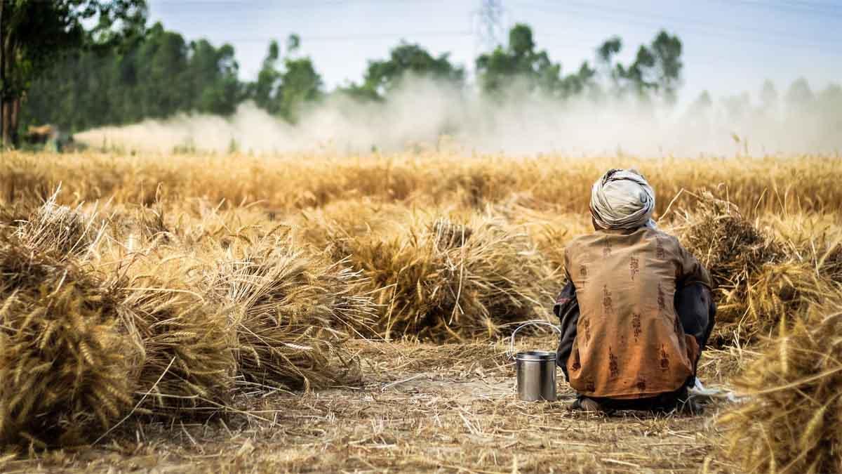 Slogans On Farmer in Hindi