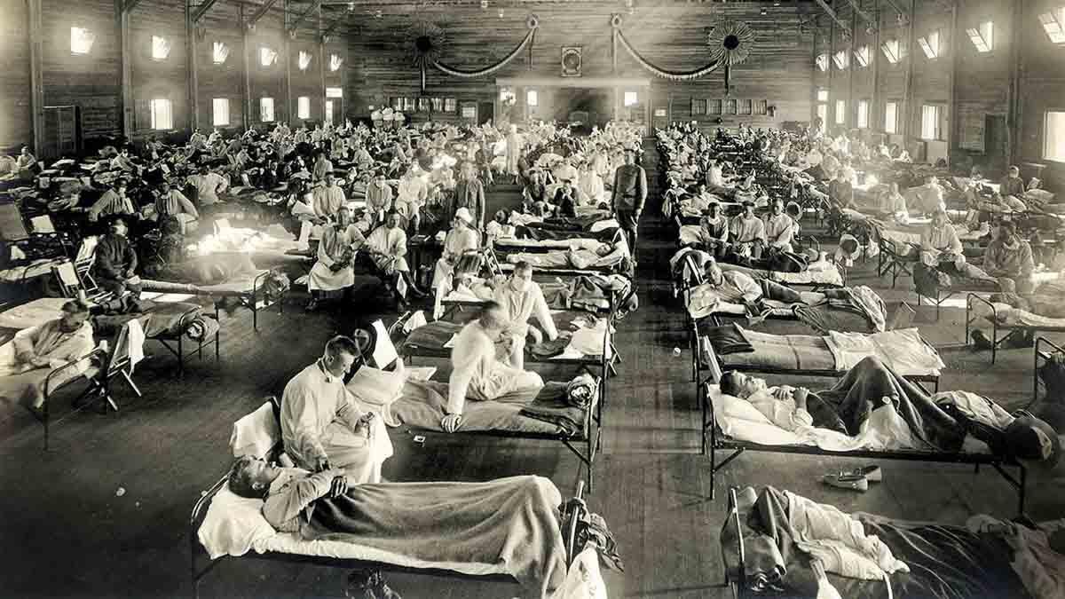 Spanish Flu in Hindi