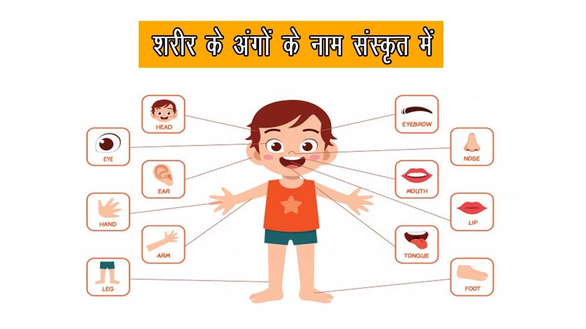 Body Parts Name in Sanskrit
