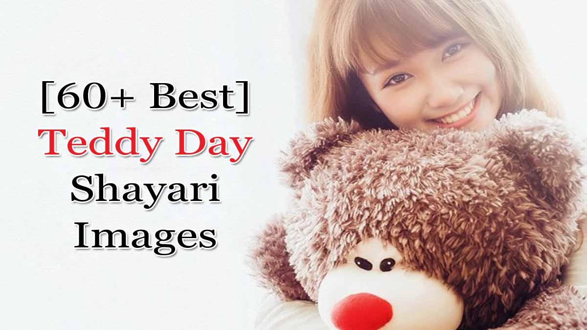Teddy Day Par Shayari