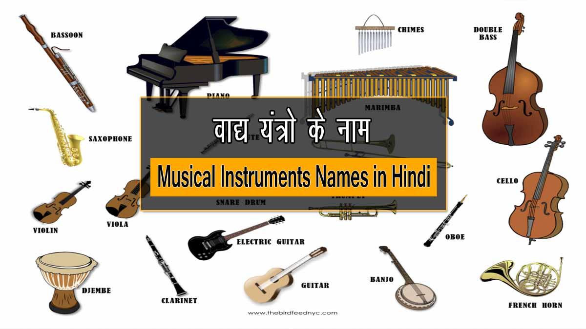 Musical Instruments Names in Hindi