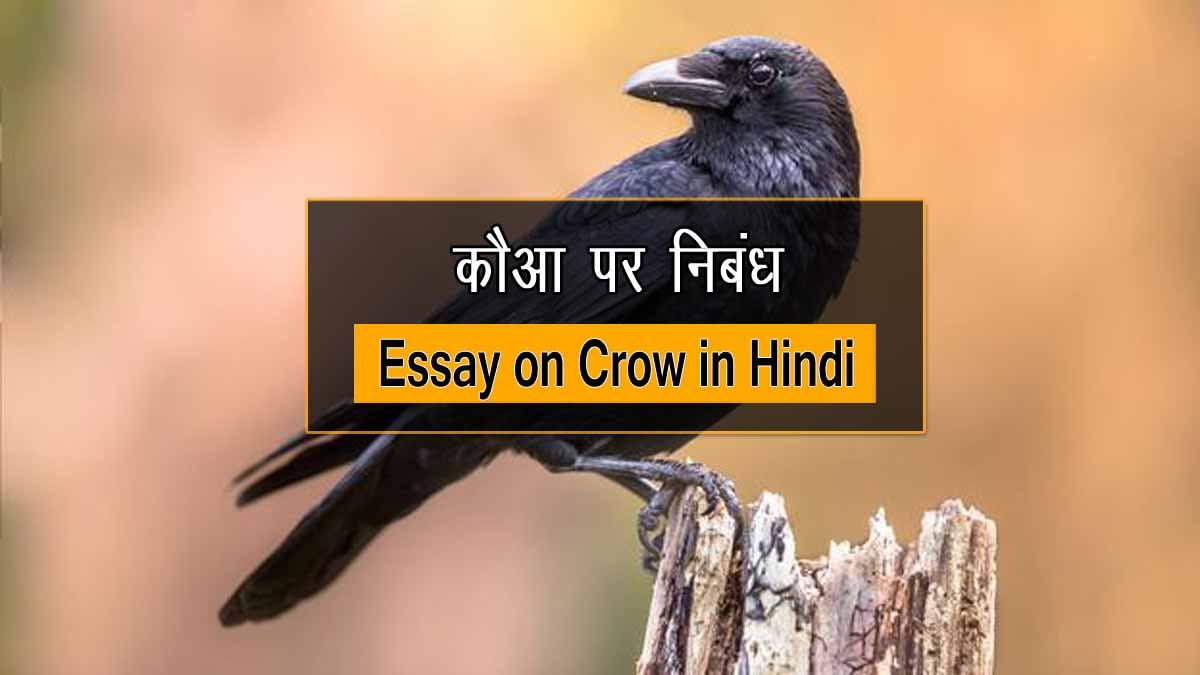 Essay on Crow in Hindi