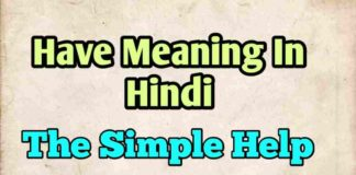 Have Meaning In Hindi