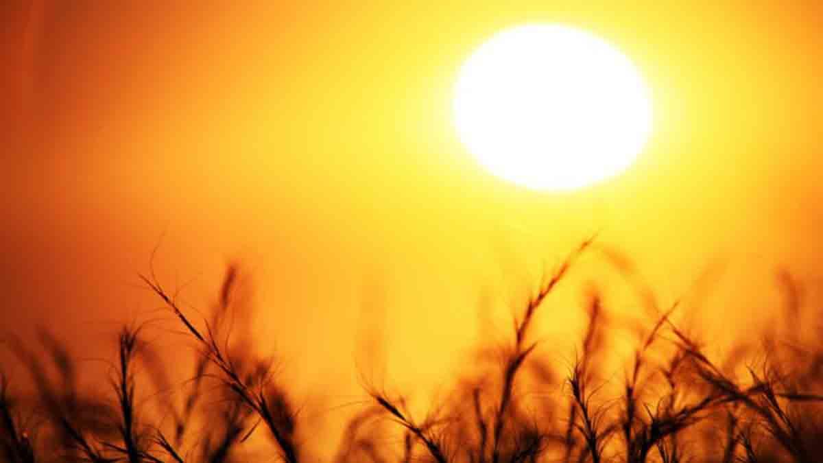 Essay on Sun in Hindi