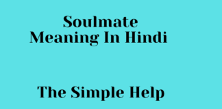 Soulmate Meaning In Hindi