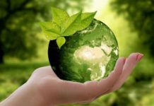 Quotes on Earth Day in Hindi