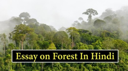 Essay-on-Forest-In-Hindi