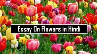 Essay-On-Flowers-in-Hindi-