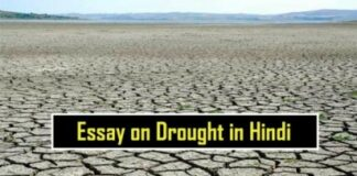 Essay-on-Drought-in-Hindi-