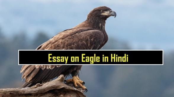 Essay-on-Eagle-in-Hindi