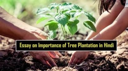 Essay-on-Importance-of-Tree-Plantation-in-Hindi-