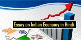Essay-on-Indian-Economy-in-Hindi