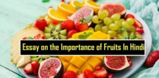 Essay on the Importance of Fruits In Hindi