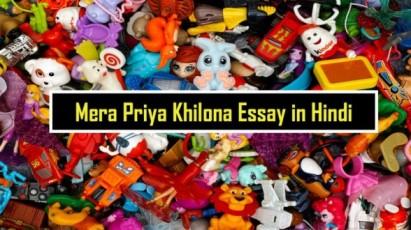 Mera Priya Khilona Essay in Hindi