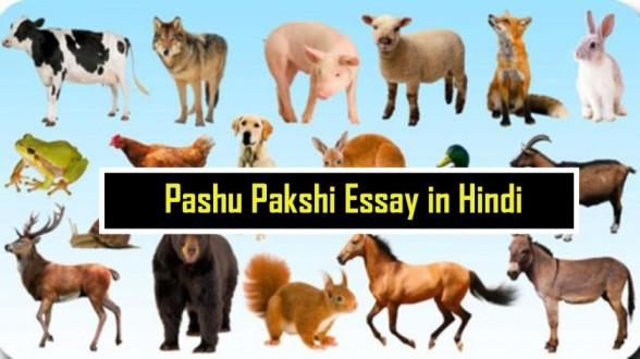Pashu Pakshi Essay in Hindi