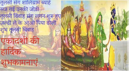 Tulsi Vivah Status in Hindi