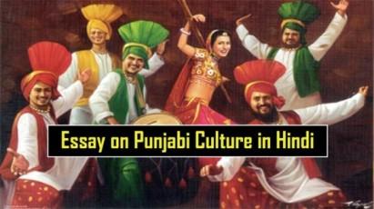 Essay-on-Punjabi-Culture-in-Hindi